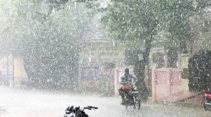 sathankulam rain news